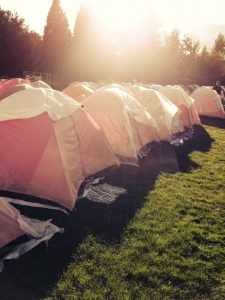 Komen Tents On Grass